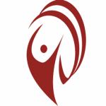DataVelocity's logo